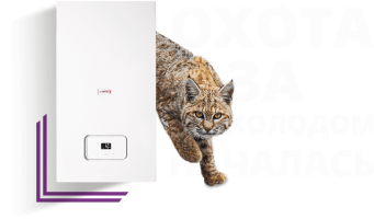 Protherm Рысь К 25/30 MKV